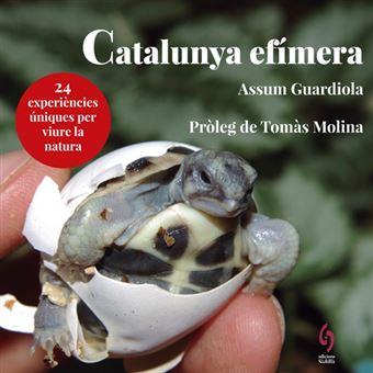 Catalunya efímera