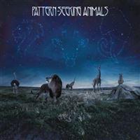 Pattern-seeking animals - 2 Vinilos + CD
