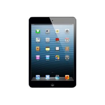 Apple iPad mini 16 GB WiFi negro / grafito