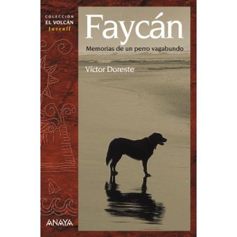 Faycán