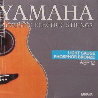 Cuerdas de guitarra Yamaha AEP12