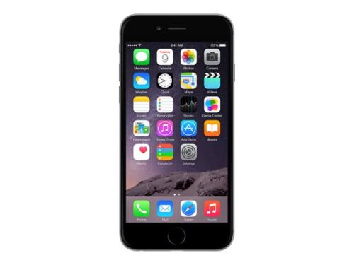 Apple iPhone 6 32GB Gris Espacial