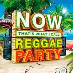 Now that s what i call reggae party