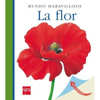 Mundo Maravilloso: La flor