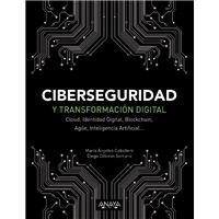 Ciberseguridad y transformación digital
