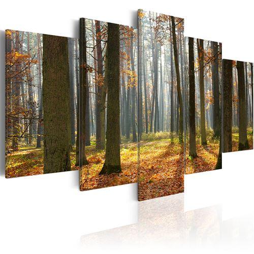 Tableau - Un joli paysage de forêt - Décoration, image, art | Paysages | Forêt |