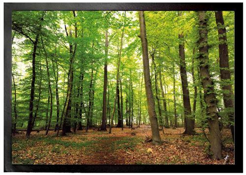 Forêts Paillasson Essuie-Pieds - Forêt Du Silence (50x70 cm)