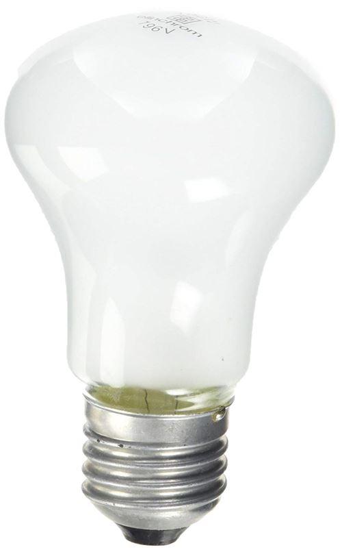 ELINCHROM lampe pilote 100W 196V pour torche D-lite