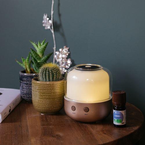Un espace Nature & Découvertes dans votre magasin - Conseils ...