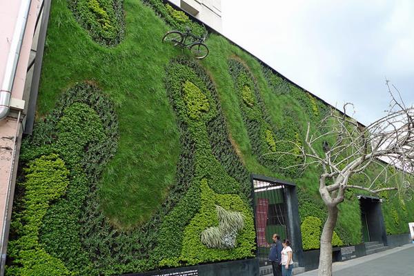 Jardin vertical : Nina végétal invite la nature dans votre salon