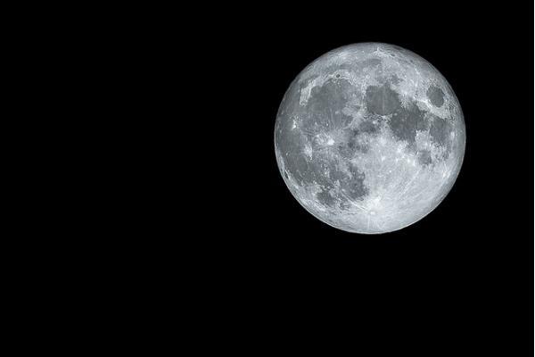 plantation pleine lune