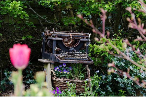 Jardin vintage redonnez vie aux plantes anciennes for Plantes decoratives jardin