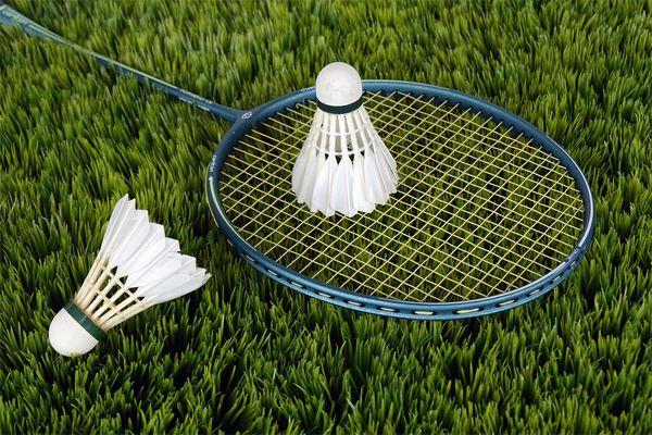 BadmintonL'autre De Sport D'experts RaquetteConseils Fnac N80nmw
