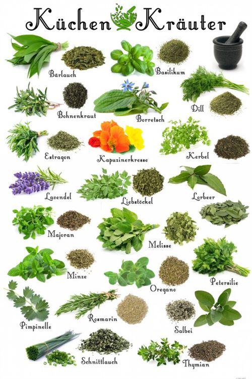 Cuisine Papier Peint Photo/Poster Autocollant - Herbes Aromatiques (180x120 cm)
