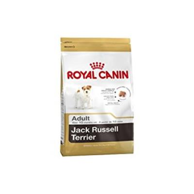 ROYAL CANIN/Jack Russel Terrier Adult Sac de 1,5 kg Croquettes pour chien Jack Russel à partir de 10 mois