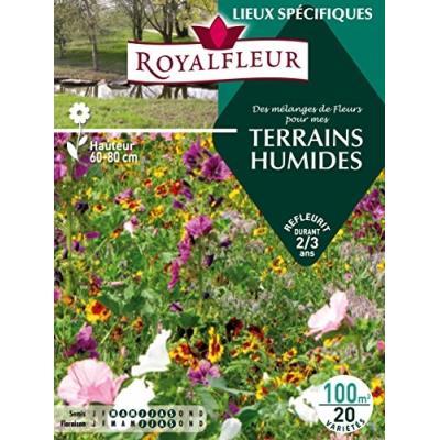 Royalfleur Pfrh08819 Graines De Des Mélange De Fleurs Mes Terrains Humides 100 M²