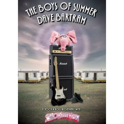 The Boys of Summer - [Version Originale]