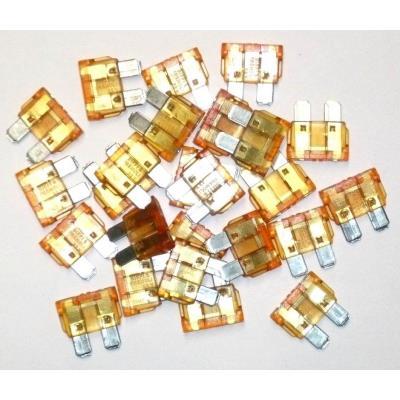 Fusibles Enfichables 40 Ampères Sachet De 25 Fusibles