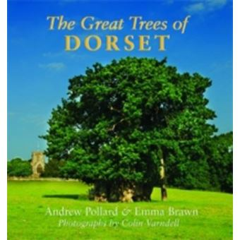 Great trees of dorset
