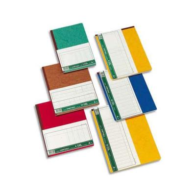 Piqûre trace comptable folioté 24x32 cm 80 pages 10 colonnes
