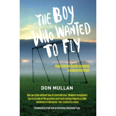 The Boy Who Wanted To Fly