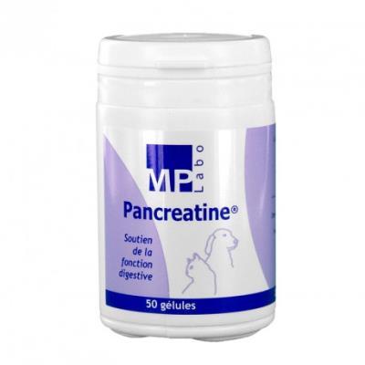 Pancreatine complément digestion pour chiens et chats