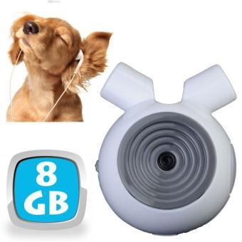 camera collier pour chien