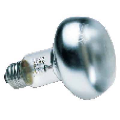 Ampoule Chauffante 150 watts