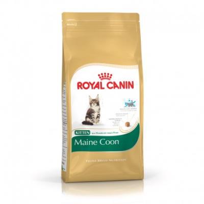 Royal canin - maine coon kitten - 4 kg
