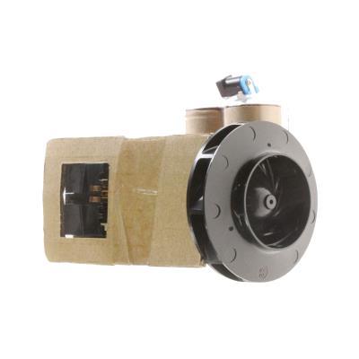 Black Et Decker Batterie 36 V + Moteur Ref: 58861601