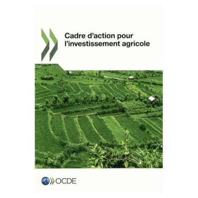 Aide au développement - N° 1974 - Aide au développement - , efforts et politiques poursuivis par les membres du Comité d'aide au