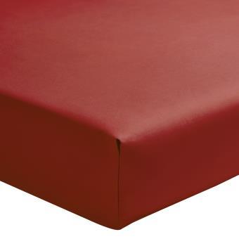 Essix   Percale coton Drap Housse Sienne   160 x 220 cm   Achat