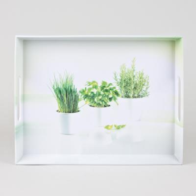 Emsa plateau 40x31cm *herbes