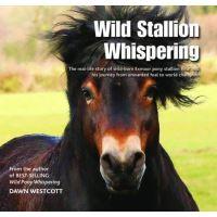 Wild stallion whispering