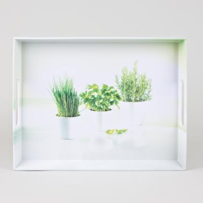 Emsa plateau 50x37cm *herbes