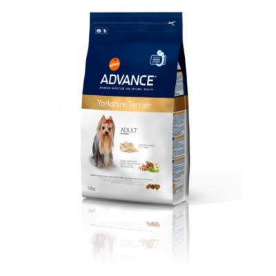 Advance - yorkshire terrier - 1,5 kg