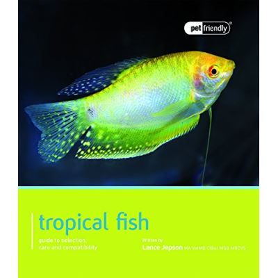 Tropical Fish: Pet Friendly - Tropical Fish