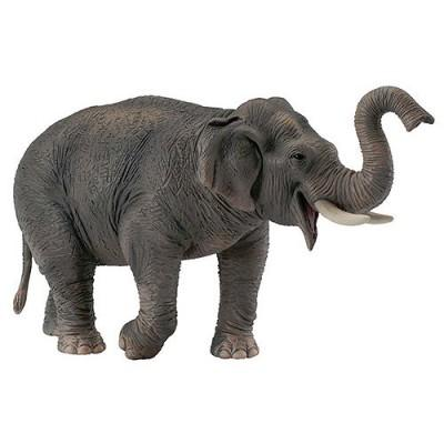 Figurines Collecta - Eléphant d'Asie
