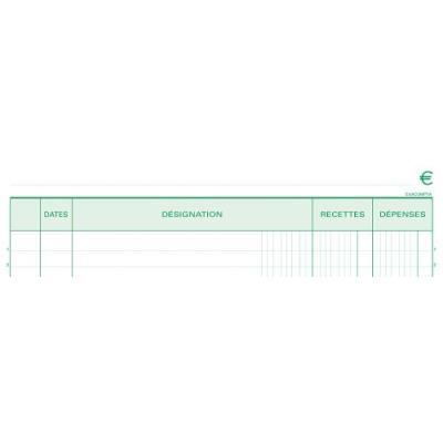 Manifold Exacompta 50 feuillets Recettes Dépenses 29,7x21cm Dupli