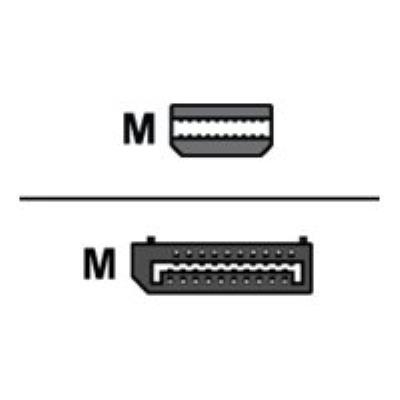 Lenovo Adaptateur DisplayPort - 17.6 cm