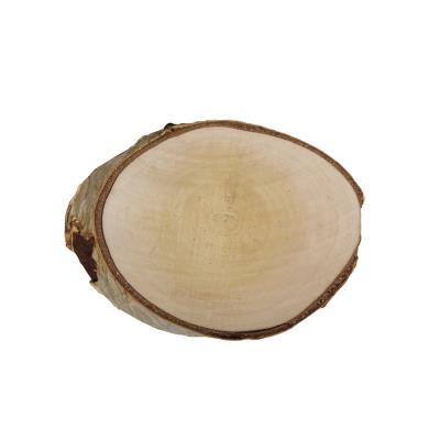 Disque de bouleau - Ø16 cm - Rayher