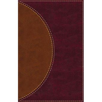Amplified reading bible, leathersof