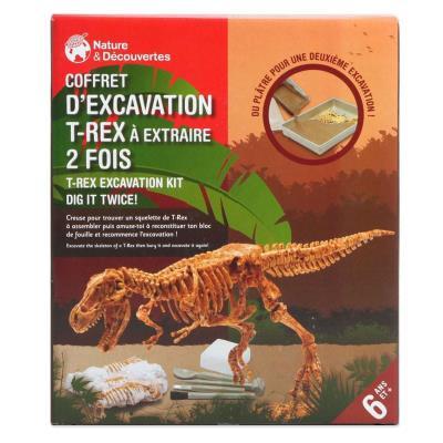 Coffret d'excavation squelette T-Rex
