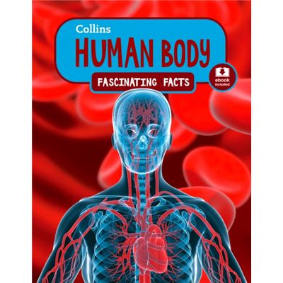Human Body (Collins Fascinating Facts) (Paperback)
