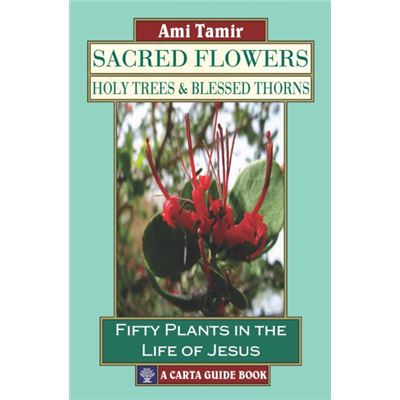 Sacred Flowers Holy Trees/Blessed Thorns