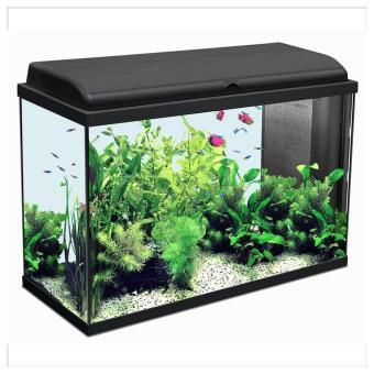 aquarium iban longueur de 80cm noir aquariums. Black Bedroom Furniture Sets. Home Design Ideas