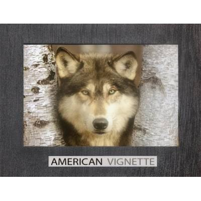 American Vignette - [Version Originale]