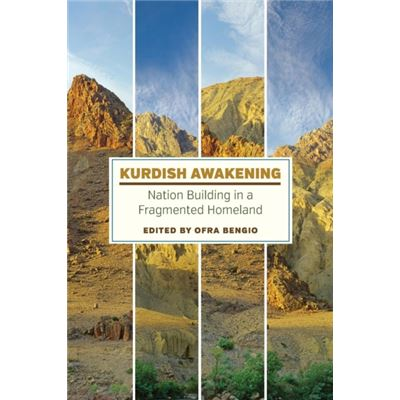 Kurdish Awakening: Nation Building In A Fragmented Homeland (Paperback)
