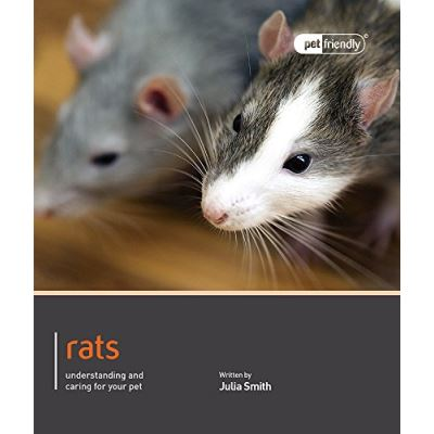 Rats - Pet Friendly