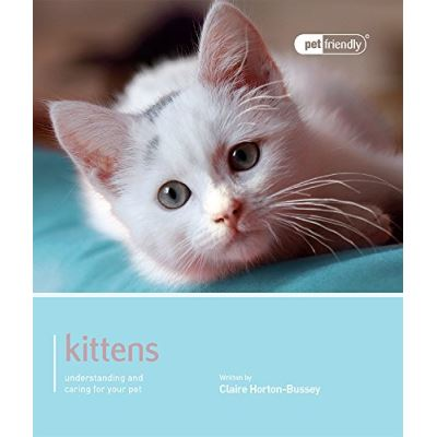 Kittens - Pet Friendly: Understanding and Caring for Your Pet